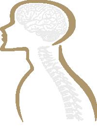 Brain Spine Surgery Logo